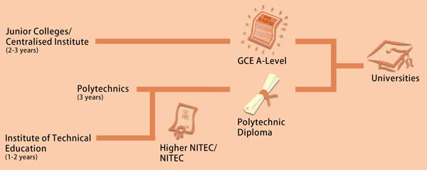 pathways-to-singapore-universities