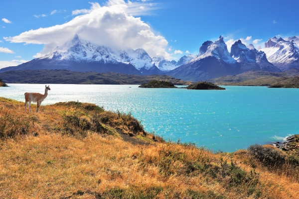 Targeting demand for study abroad in Chile