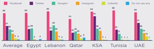 mena-top-social-media-networks