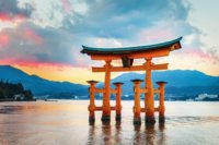 Japan's enrolment growth picking up steam