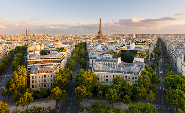 Another year of growth for France
