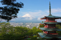 Japan eases restrictions for international travellers, including students
